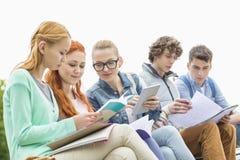 Estudantes universitário que estudam junto no parque imagem de stock