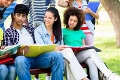 Estudantes universitário que estudam no banco Imagens de Stock