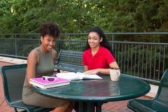 Estudantes universitário que estudam no terreno Fotos de Stock Royalty Free