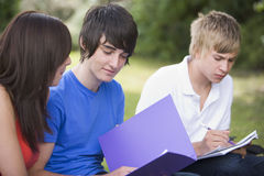 Estudantes universitários que estudam fora Foto de Stock