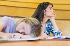Estudiante aburrido que escucha mientras que el dormir del compañero de clase Imágenes de archivo libres de regalías
