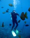Estudiante adolescente del equipo de submarinismo - oídos de los claros Imagenes de archivo
