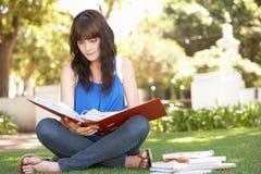 Estudiante adolescente femenino que estudia en parque Foto de archivo
