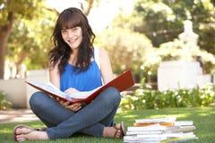 Estudiante adolescente femenino que estudia en parque Fotografía de archivo libre de regalías