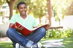 Estudiante adolescente masculino que estudia en parque Imagen de archivo libre de regalías