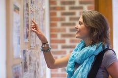 Estudiante alegre que señala en el tablón de anuncios Foto de archivo libre de regalías