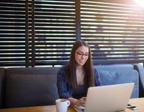 Estudiante alegre que trabaja en el cuaderno en café Muchacha hermosa del inconformista que usa el red-libro Fotografía de archivo