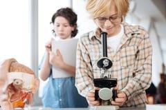 Estudiante apasionado atento que funciona con algunos pruebas de laboratorio Foto de archivo