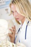 Estudiante de la medicina con el esqueleto Imagenes de archivo
