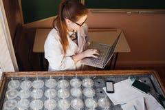 Estudiante de tercer ciclo de la mujer que trabaja en el ordenador portátil en laboratorio de la biotecnología foto de archivo