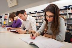 Estudiante en el trabajo en una biblioteca Imagenes de archivo