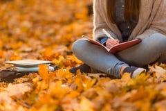 Estudiante en parque del otoño Fotografía de archivo libre de regalías