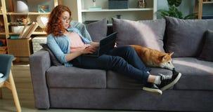 Estudiante feliz que usa el ordenador portátil que se sienta en el sofá con el perro del inu del shiba en el apartamento almacen de metraje de vídeo