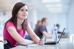 Estudiante femenino bonito con la computadora portátil Imagen de archivo libre de regalías