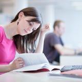 Estudiante femenino bonito con la computadora portátil Fotografía de archivo libre de regalías