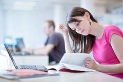 Estudiante femenino bonito con la computadora portátil Imagen de archivo