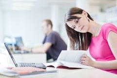 Estudiante femenino bonito con la computadora portátil y los libros Foto de archivo