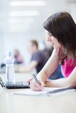 Estudiante femenino bonito con la computadora portátil y los libros Imagen de archivo libre de regalías