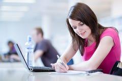 Estudiante femenino bonito con la computadora portátil Foto de archivo libre de regalías