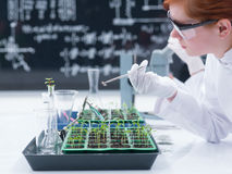 Estudiante que analiza en un laboratorio de química Imagen de archivo libre de regalías
