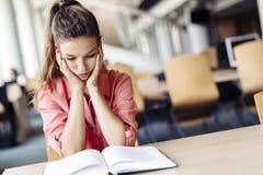 Estudiante que estudia en biblioteca Imagen de archivo libre de regalías