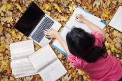 Estudiante que estudia en las hojas de otoño Fotos de archivo libres de regalías