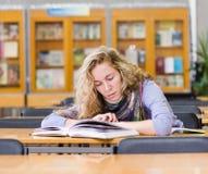 Estudiante que lee un libro en la biblioteca Imagen de archivo