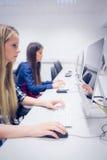 Estudiante serio que trabaja en el ordenador Fotos de archivo