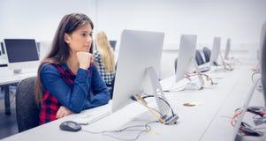 Estudiante serio que trabaja en el ordenador Fotografía de archivo