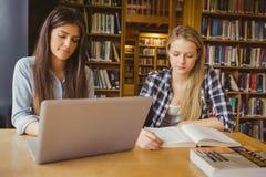 Estudiante serio que trabaja en la biblioteca Imagen de archivo
