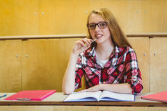 Estudiante sonriente que se sienta en su escritorio Imagen de archivo libre de regalías