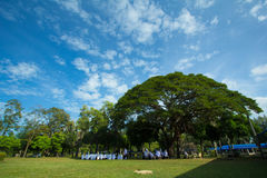Estudiante tailandés en el parque pattani Tailandia Asia Fotografía de archivo