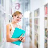 Estudiante universitario bastante joven en una biblioteca Fotos de archivo