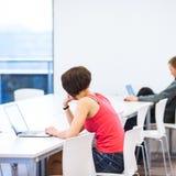 Estudiante universitario bonito, joven que estudia en la biblioteca Fotografía de archivo libre de regalías