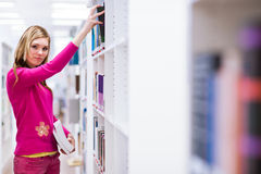 Estudiante universitario de sexo femenino en una biblioteca Fotos de archivo
