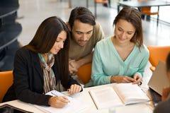 Estudiantes absorbidos en sus estudios en la biblioteca Imágenes de archivo libres de regalías