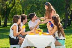 Estudiantes adolescentes jovenes que tienen una comida campestre al aire libre Foto de archivo libre de regalías