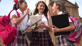 Estudiantes adolescentes que hablan y que sostienen los libros Imágenes de archivo libres de regalías