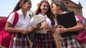 Estudiantes adolescentes que hablan y que sostienen los libros Foto de archivo libre de regalías