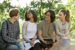 Estudiantes alegres jovenes que se sientan y que estudian al aire libre Fotos de archivo libres de regalías