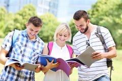 Estudiantes alegres que aprenden en el parque Imagen de archivo libre de regalías