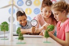 Estudiantes alegres que examinan el modelo del árbol en clase Fotos de archivo