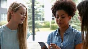 Estudiantes bonitos que cuelgan hacia fuera en café del campus almacen de video