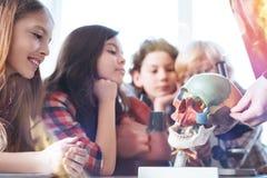 Estudiantes brillantes animados que se sientan en la conferencia Foto de archivo