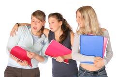 Estudiantes con los cuadernos Imagenes de archivo