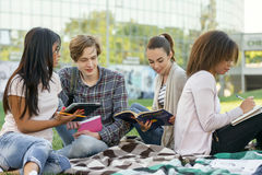 Estudiantes concentrados que estudian al aire libre Imagenes de archivo