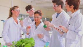 Estudiantes de la biología con las plantas un tomate y una PC de la tableta almacen de metraje de vídeo