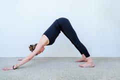 Estudiantes de la yoga que muestran diversas actitudes de la yoga Foto de archivo libre de regalías