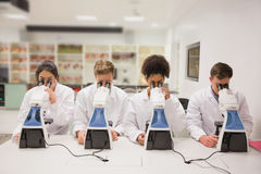Estudiantes de medicina que trabajan con el microscopio Imágenes de archivo libres de regalías
