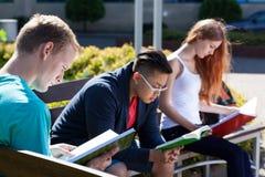 Estudiantes diversos en un banco Imágenes de archivo libres de regalías